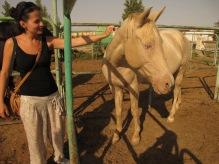 12- Gökdepe - Golden horses (Akhal-Teke)