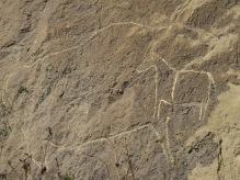 29 - Qobustan - Petroglyphes