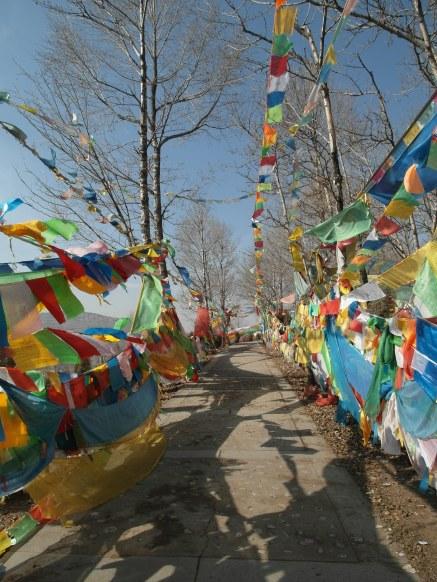 wpid-mntsdcard_ExternalSDDCIMBlogGansù-e-Qinghai26-Xining-prayers-hill-near-Kumbum-monastery.JPG.jpg