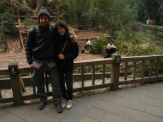 20 - Chengdu - Giant panda breeding center