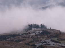 39 - Yuanyang - rice terraces