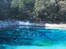 53 - Jiuzhaigou national park