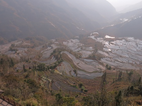 53 - Yuanyang - rice terraces