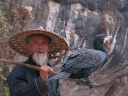 02 - Cormoran and fisherman - Xingping