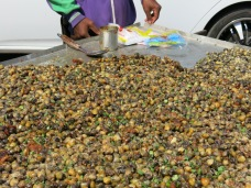 12 - Siem Reap - Snails