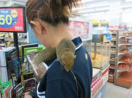 55 - Phuket - thai weird pets